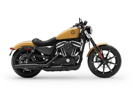 Harley-Davidson® Iron 883™ 2019